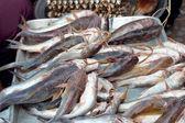 Peixe fresco no mercado. — Fotografia Stock