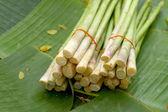 Bunch of fresh green asparagus — Stock Photo