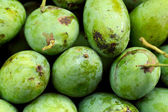Fruit mango in the market — Stock Photo