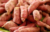 Yam at the market — Stock Photo