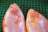 świeże ryby w rynku. — Zdjęcie stockowe