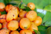 Marian plum fruit - asia fruit — Stockfoto