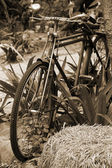 Close up of vintage old bicycle. — Stock Photo