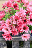 Hermosas las flores artificiales de crisantemo — Foto de Stock