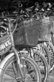 Close up of vintage bicycle. — Foto Stock