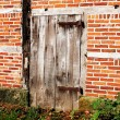 Old wooden barn door — Stock fotografie