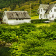 Stock Photo: Country houses in Norway