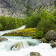 National park Jostedalsbreen in Norway  — Stock Photo