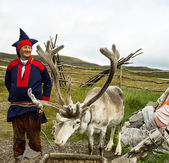 Deer and reindeer breeder — Stock Photo