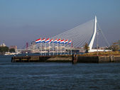Bridges and buildings in Rotterdam the Netherlands — Stock Photo