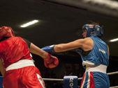 Women's boxing match — Stock Photo