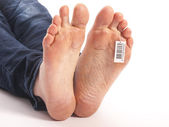Dead feet with barcode in a morgue — Stock Photo