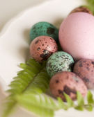 Painted Easter eggs big and small — Stock Photo
