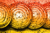 Abstract onions — Stock Photo