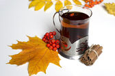 Autumn tea with cinnamon — Stock Photo