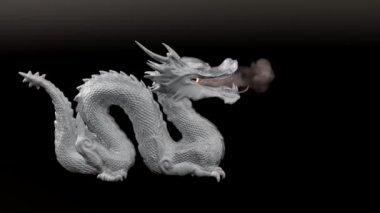 Dragon stature — Stock Video