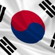 South Korea — Stock Photo #13767421