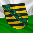 Fahne Flagge Sachsen — Stock Photo