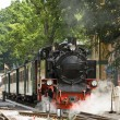 Steam engine train — Stock Photo