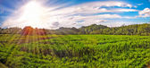 Panoramic sunrise. Sunset — Stock Photo