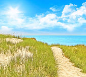 Path baltic sea — Stock Photo