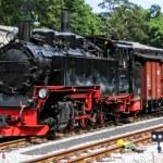 Steam locomotive — Stock Photo #25131741