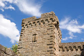 Castle tower — Stock Photo