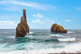 Madeira coast — Stock Photo