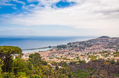 Funchal, Madeira — Stock Photo