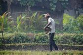 Tharu man strewing seeds in fields — Stockfoto
