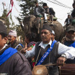 Elephant festival, Chitw2013, Nepal — Stock Photo #40268145