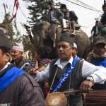 Elephant festival, Chitwan 2013, Nepal — Stock Photo #40268145