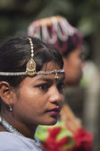 Elephant festival, Chitwan 2013, Nepal — Stock Photo
