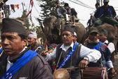 Elephant festival, Chitwan 2013, Nepal — Stock Photo