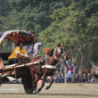 Horse cart race - Elephant festival, Chitw2013, Nepal — Stock Photo #40397301
