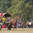 Horse cart race - Elephant festival, Chitw2013, Nepal — Stock Photo #40398347