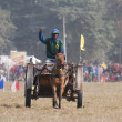 Horse cart race - Elephant festival, Chitw2013, Nepal — Stock Photo #40400825