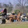 Horse cart race - Elephant festival, Chitw2013, Nepal — Stock Photo #40401209
