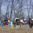 Horse cart race - Elephant festival, Chitw2013, Nepal — Stock Photo #40401485