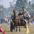Horse cart race - Elephant festival, Chitw2013, Nepal — Stock Photo #40401773