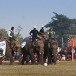 Football game - Elephant festival, Chitw2013, Nepal — Stock Photo #41246073