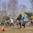 Elephant race -  festival, Chitw2013, Nepal — Stock Photo #41258521