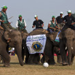 Football game - Elephant festival, Chitwan 2013, Nepal — Stock Photo #41258709