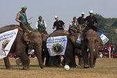 Football game - Elephant festival, Chitwan 2013, Nepal — Stock Photo
