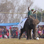 Football game - Elephant festival, Chitwan 2013, Nepal — Stock Photo #41971005
