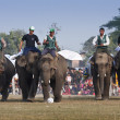 Football game - Elephant festival, Chitw2013, Nepal — Stock Photo #41971245