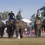 Football game - Elephant festival, Chitwan 2013, Nepal — Stock Photo #41971245
