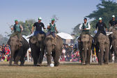 Football game - Elephant festival, Chitwan 2013, Nepal — Stock Photo
