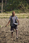 Nepali man spread rice in fields — Foto Stock