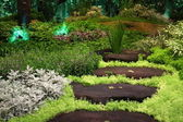 Garden with wooden stepping path landscape — Stock Photo